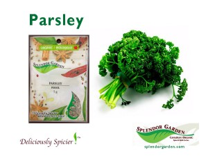 Parsley spice of week 03 17 14