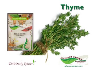 Thyme spice of week 04 14 14