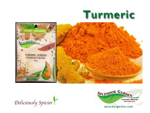 Turmeric spice of week 04 21 14