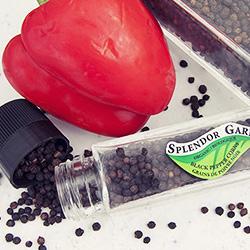 Grinder Bottle