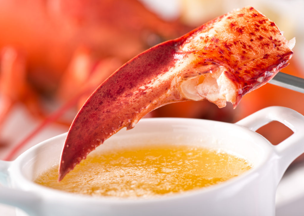 A delicious atlantic lobster claw with melted garlic butter.